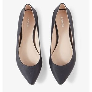 NWT Express Textured Pointed Toe Flats
